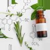 Pflanzen-Extrakte